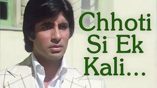 Chhoti Si Ek Kali Khili Thi | Jurmana (1979) Song | Rakhee