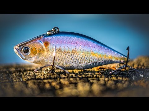 Lipless Crankbaits Tips For Spring Bass Fishing