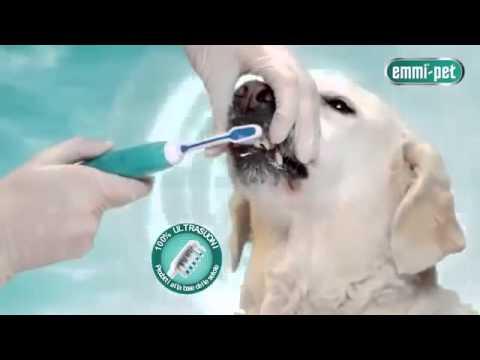 Emmi-pet Spazzolino a Ultrasuoni per Cani Italiano - SmileNowForever