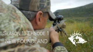 S11 E1 - New Foundland