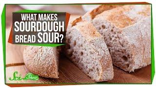 What Makes Sourdough Bread Sour?