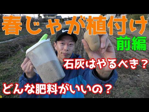 , title : '春じゃがいも植付け 前編 土壌PHは?石灰はいらない?オススメ肥料は?