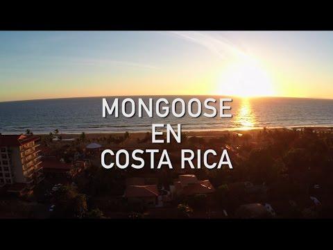 Mongoose En Costa Rica - Part 1
