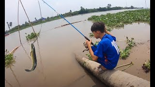 Team Tony Đi Câu Cá Lóc Đồng - Cá Lóc Nướng Trui