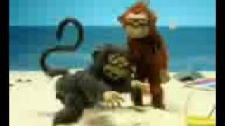 变态傻猴子