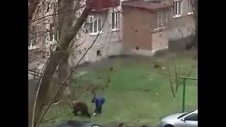 Смотреть онлайн Русский парень выгуливает медведя во дворе