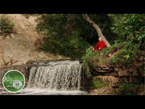 Msica para Meditar e Relaxar Acalmar Mente e Espirto - musica serena e tranquila - 1 Hora