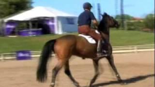 George Morris Rides Sloane Coles Hot Horse