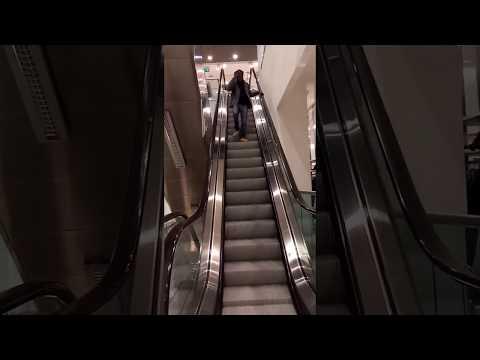 scale a contrario di un immigranti in un centro commerciale