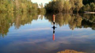 Сроки начала летней рыбалки