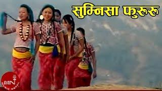 New Nepali Limbu Song 2072    Sumnisa Fururu - Chesun Serma Brabim   Kirat Music