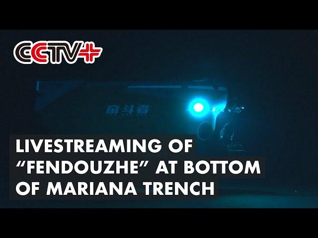 Китайский батискаф провел онлайн-трансляцию со дна Марианской впадины
