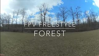FPV Freestyle Forest
