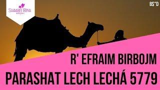 Parashat Lech Lechá