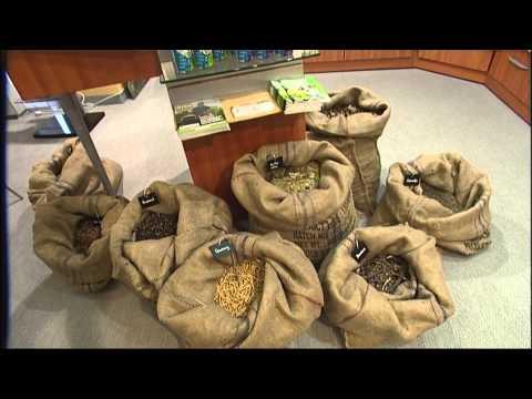 Los envolvimientos acéticos para el adelgazamiento lyashek