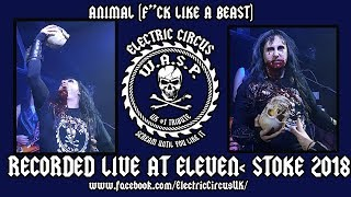Electric Circus UK (WASP Tribute) - Animal, F*ck Like A Beast (W.A.S.P. cover)