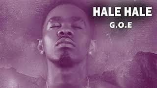 Patoranking   Hale Hale Instrumental