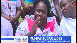 Mumias Sugar woes: Leaders threaten to reclaim the land donated to Mumias sugar for planting