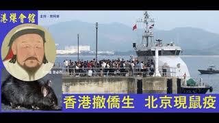 香港撤僑生  北京現鼠疫