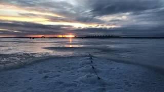 Дамба южная ветка финский залив рыбацкие места