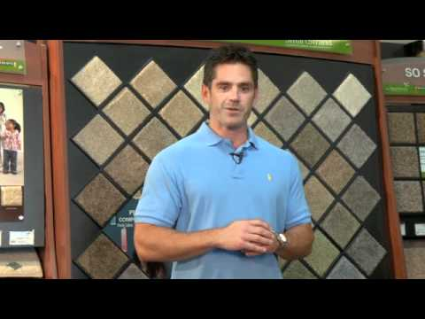 Cleveland Carpet Cleaning Tip:  Why?  How Often?