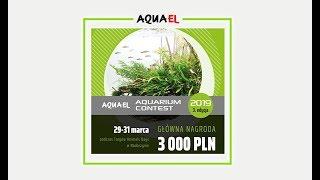 Konkurs AquaEL 2019 (3 edycja)