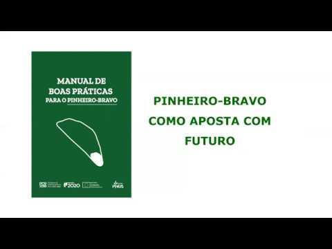 Manual de Boas Práticas para o Pinheiro-bravo - Apresentação online