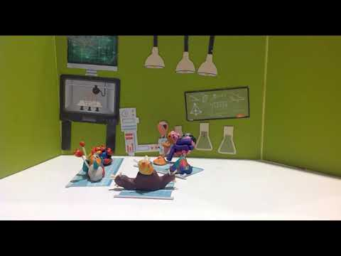 Kids Animations - Belmont Forum Shopping Centre - Wednesday 17th - 1130am - Team 4 - WA
