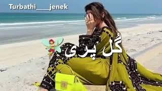 Ti Aahage Hale Dil Gala Bale | New Balochi status song | Balochi Status video