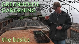 The Basics of Greenhouse Gardening