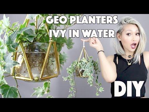DIY Efeuvase aus Papierstrohhalmen - Videoanleitung zum Basteln und Verpflanzen