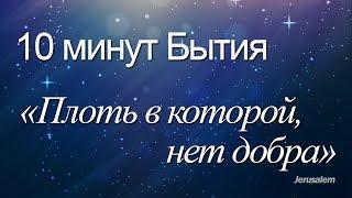 """10 минут Бытия - 019(Бытие 3:7) / """"Плоть в которой, нет добра"""""""