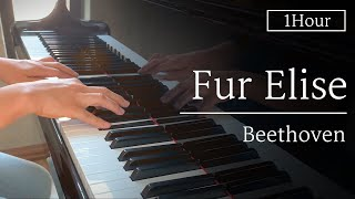 [Classic Piano 1 Hour] L.V.Beethoven : Bagatelle No.25 Für Elise | Famous Beethoven Songs