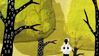Como árvores conversam entre si por uma rede subterrânea - BBC
