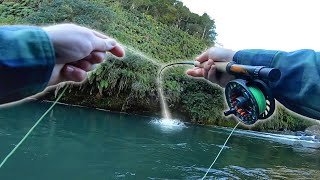 The BEST Wilderness Fly Fishing For Huge Trout!