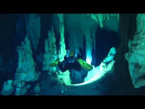 Tours in Playa del Carmen, Tulum, and Riviera Maya