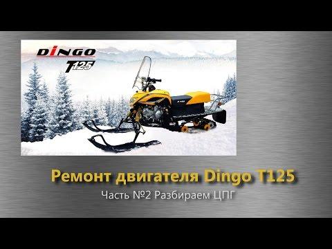 Dingo 125 ремонт двигателя. Часть 2. Разбираем ЦПГ