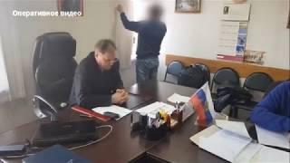Задержан руководитель КГБУ «Рыбинское лесничество» Красноярский край