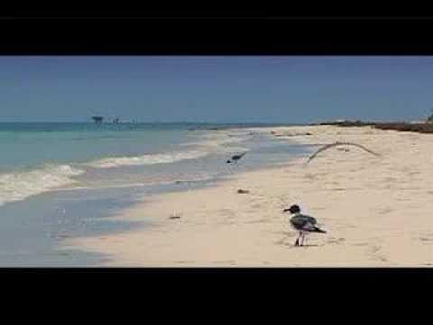 أجمل الشواطئ حول العالم 15