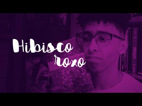HIBISCO ROXO: uma análise dos PERSONAGENS! ? Um Bookaholic