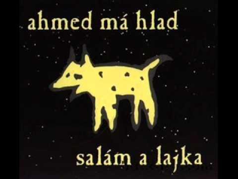 Ahmed má hlad - Taja večer