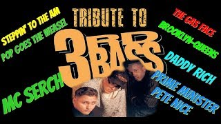 3RD BASS TRIBUTE