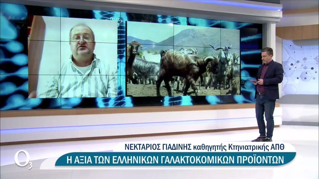 Η αξία των ελληνικών γαλακτοκομικών προϊόντων   22/03/2021   ΕΡΤ