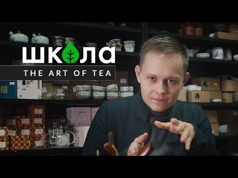 Чайная лекция. Введение в чай. История чая