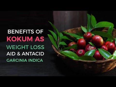Kokum - Kokum Latest Price, Manufacturers & Suppliers