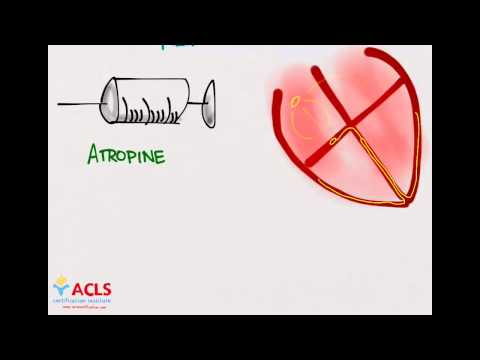 PALS Medications Part One by ACLS Certification Institute - YouTube