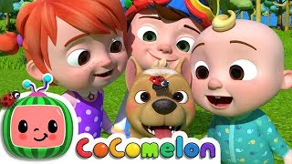 Where Has My Little Dog Gone? | Cocomelon (ABCkidTV) Nursery Rhymes