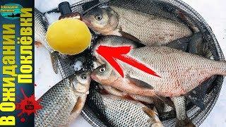 Зимние насадки на рыбалку
