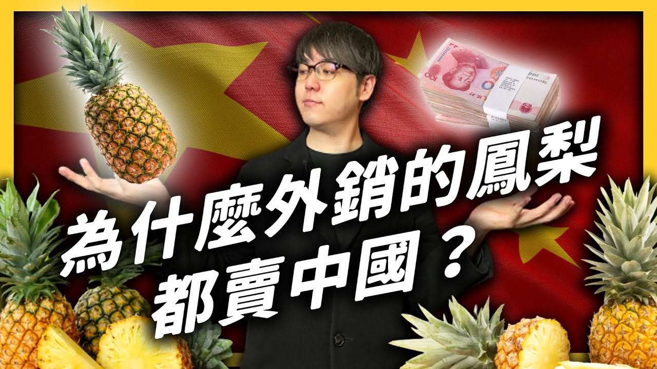 中國暫停台灣鳳梨進口,影響很大嗎?為什麼台灣外銷的鳳梨,九成都要賣中國?|志祺七七