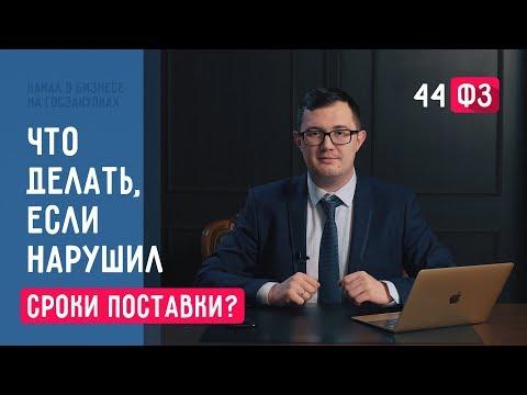 Нарушение сроков поставки в госзакупках / Штрафы и пени / Расторжение договора